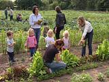 Mütter mit ihren Kindern bei der Gartenarbeit; Rechte WDR (TV-Bild)